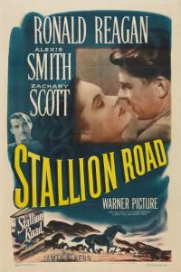 Stallion Road (1947)