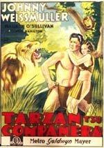 Tarzán y su compañera