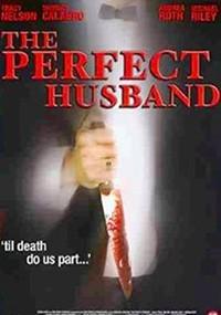 El marido perfecto (2004)