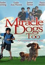 Un milagro muy ¡guau! (2006)