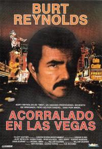 Un policía y pico (1993)