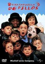 Una pandilla de pillos (1995)