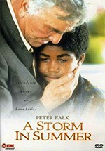 Una tormenta de verano (2000)