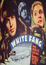 White Fang (1936)